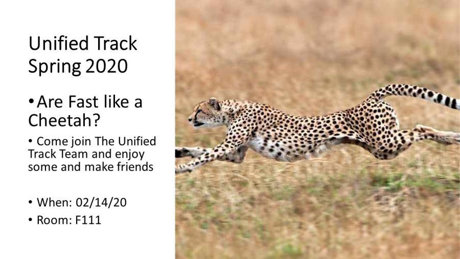 United Track Callout