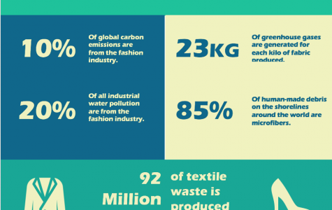 How Fashion Effects Our Environment