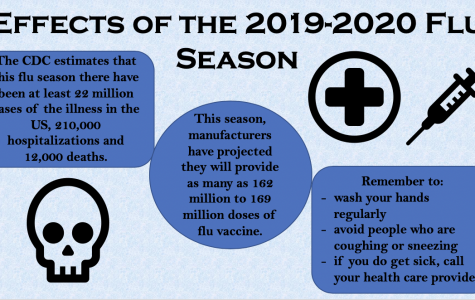 Effects of the 2019-2020 Flu Season