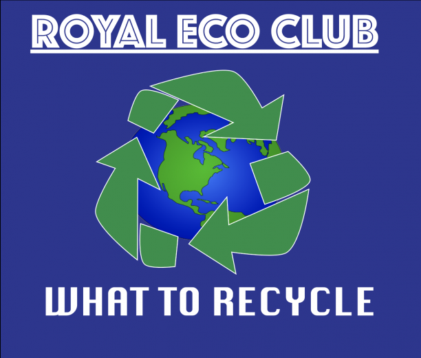HSETV: What to Recycle
