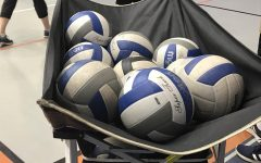 Mens Volleyball Pictures